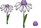 Jelly Tot Flowers (Click to enlarge)